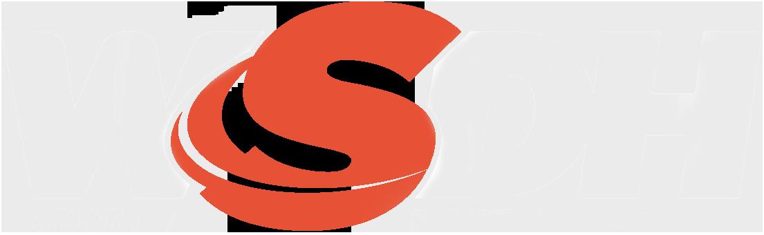 Job Schenau